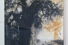 Baobab in Zim | Digital Print, South African Soil & Acrylic mounted on Canvas | 9x6  [SOLD}