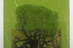 Baobab on Green | Solar print Lithograph on plastic bag |  28 x 40