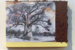Grand Baobab | Solar Print Lithograph, South African Soil, & Acrylic mounted on Canvas| 9x12.5 [SOLD}