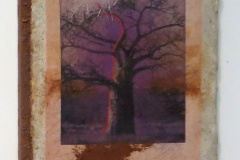 Baobabs' Message #5   Solar Print Lithograph on Silk mounted on Zebra Dung Paper, South African Soil, Colored Pencil & Immunization Bottles mounted on Canvas   10.50x12